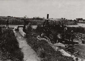 genale-irrigazione-meccanica-in-un-campo-di-cotone