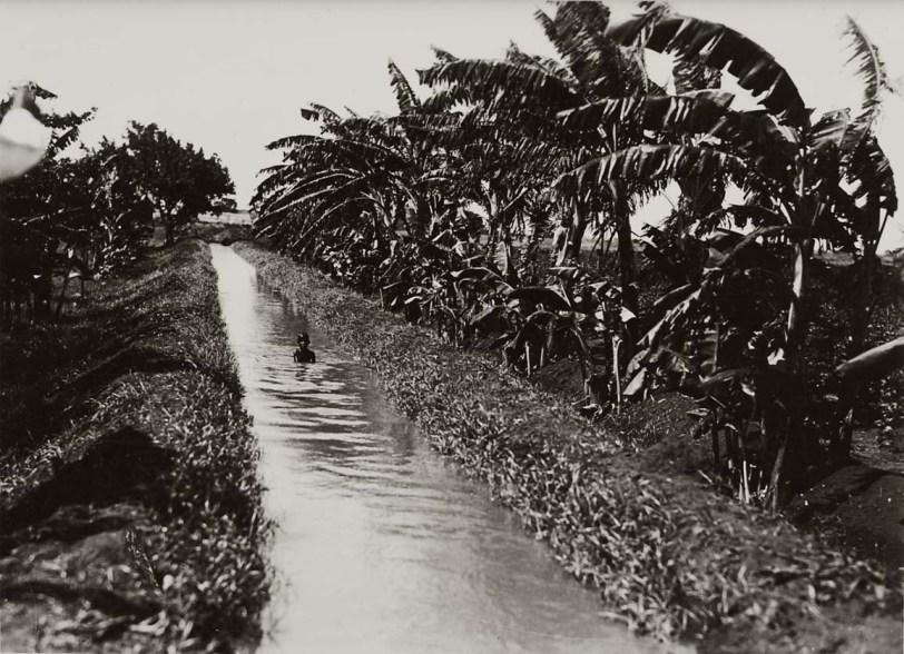 genale-un-bambino-somalo-si-bagna-in-un-canale
