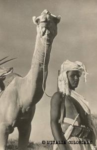 Dubat_Dubor_reparti cammellati-Somalia (1)