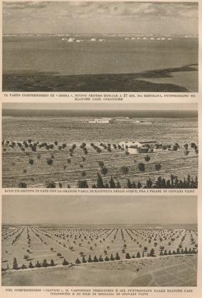 colonizzazione agricola fascista Libia (4)