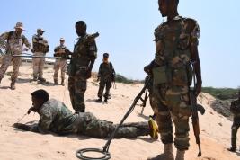 EUTM_Somalia_Italia (4)