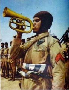 Fanti dell'Aria_Paracadutisti Libici (2)