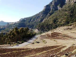 Camionabile Massaua-Asmara-Decamerè (3)