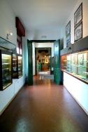 Museo Modellismo storico_ Voghenza_Ferrara (3)