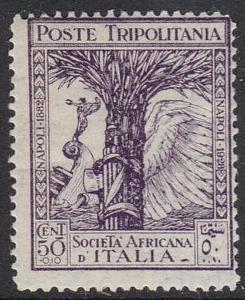 Francobollo della Società africana d'Italia (1928)