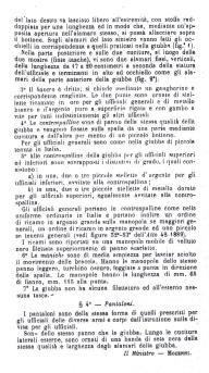 Giubba Mod. 1894 per ufficiali del Regio Corpo Truppe Coloniali (Testo pag. 2) (1)