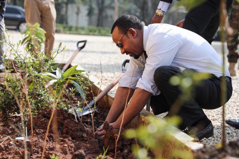 Abiy Ahmed Ali Nobel pace Etiopia_alberi_cambiamento climatico (1)