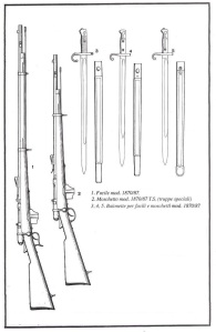 Fucile Vetterli 1870 e baionette