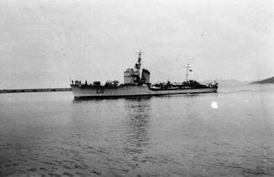 Torpediniera_Lupo_maggio_1941