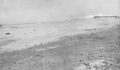 1930, Mogadiscio. La duna presso il cimitero prima del rimboschimento