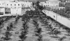 1931,Mogadiscio-Coccheto presso il palazzo degli uffici