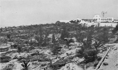 1932, Mogadiscio. La duna presso il cimitero dopo il rimboschimento